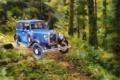 Картинка машина, лес, деревья