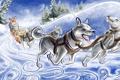 Картинка зима, снег, ветер, человек, лайки, упряжка, ёлки