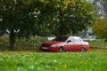 Картинка Priora, трава, ВАЗ, авто, машина, auto, дерево