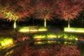 Картинка город, скамья, деревья, ночь, свет, парк