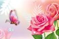 Картинка бабочка, розы, коллаж, цветы