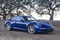 Картинка небо, деревья, синий, купе, 911, суперкар, колосья