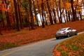 Картинка дорога, осень, природа, nissan, 350z