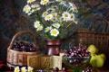 Картинка цветы, вишня, стол, яблоки, ромашки, ваза, натюрморт