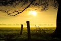 Картинка закат, пейзаж, забор, туман