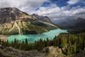 Картинка лес, деревья, горы, природа, озеро, радуга, Канада