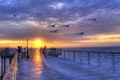 Картинка море, небо, облака, закат, птицы, люди, чайки