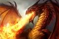 Картинка fire, dragon, reptile, dragon breath