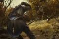 Картинка лес, животное, олень, охота, ассасин, коннор, Assasins Creed 3