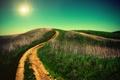 Картинка трава, горизонт, небо, дорога, холмы, солнце