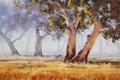 Картинка АРТ, ЖИВОТНЫЕ, РИСУНОК, ДЕРЕВЬЯ, ARTSAUS, AUSTRALIAN GUM TREE