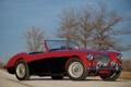 Картинка 1955, car, auto, Austin Healey, trees, 100-4, classic