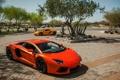 Картинка supercars, 12C, MP4, Aventador, LP700-4, Lamborghini, McLaren