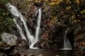 Картинка осень, листья, ветки, камни, водопады