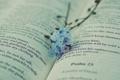 Картинка цветы, текст, книга, незабудки