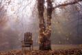 Картинка осень, пейзаж, туман, дерево, кресло