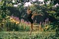 Картинка девушка, природа, поза, ножки