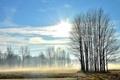 Картинка поле, пейзаж, туман, утро