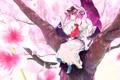 Картинка девушка, улыбка, дерево, зонт, лепестки, сакура, touhou