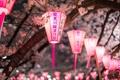 Картинка город, светильники, весна