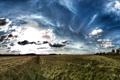 Картинка поле, небо, облака, пейзаж, природа, простор