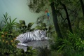 Картинка белый, листья, деревья, тигр, тропики, попугай