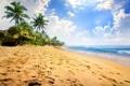Картинка песок, море, пляж, пальмы, берег, summer, beach