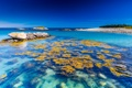 Картинка море, небо, синий, камень, горизонт, риф, коралл