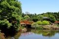 Картинка деревья, мост, пруд, камни, сад, Австралия, беседка