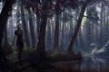 Картинка свет, деревья, озеро, Эльф, тропинка, лес птица