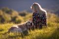 Картинка закат, девушка, настроение, собака
