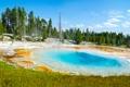 Картинка лес, деревья, природа, национальный парк, гейзер, термальное озеро