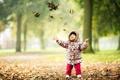 Картинка листья, осень, настроение, ребёнок