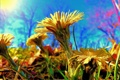 Картинка небо, трава, солнце, цветы, рендеринг, обработка