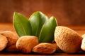 Картинка орехи, листики, миндаль