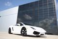 Картинка cars, auto, wallpapers, Lamborghini Gallardo, LP560 4