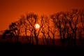 Картинка закат, деревья, солнце, силуэт, горы, небо