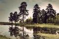 Картинка Природа, Пейзаж, берег, обои природа, болото, Натура, озеро