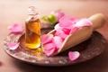 Картинка цветы, розы, лепестки, натюрморт, розовые цветы, spa
