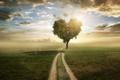 Картинка дорога, пейзаж, природа, сердце