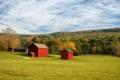 Картинка пейзаж, поле, дома, лето
