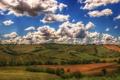 Картинка небо, облака, деревья, природа, поля