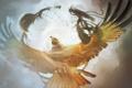 Картинка небо, свобода, птица, орел, крылья