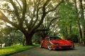 Картинка природа, блеск, Ferrari, красная