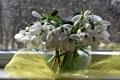Картинка вода, цветы, дождь, букет, весна, подснежники, натюрморт