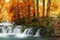 Картинка осень, лес, листья, деревья, ручей, водопад, желтые