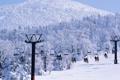 Картинка лес, подъёмник, люди, лыжи, зима, снег, горы