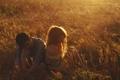 Картинка поле, девушка, свет, настроение, парень