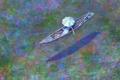 Картинка вода, девушка, река, лодка, зонт, удочка, Naohisa Inoue