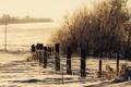 Картинка зима, снег, природа, забор, тона